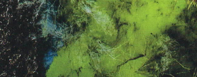 Waste Tide cover detail